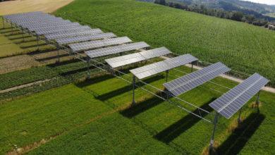 Più efficienza e raccolti migliori con l'agro-fotovoltaico