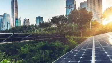 A NY tetti verdi o fotovoltaico obbligatori per combattere il cambiamento climatico