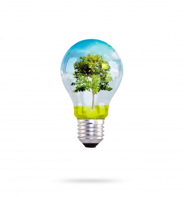 lampadina-con-albero-interno_1232-2102.jpg