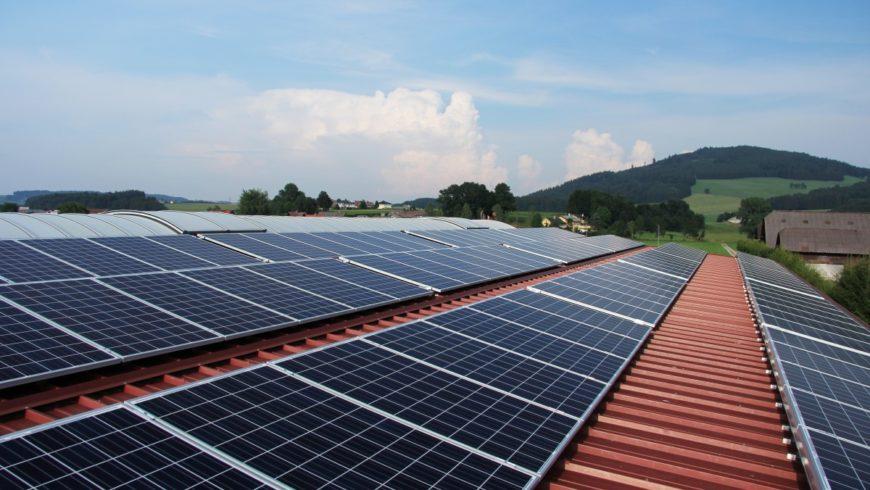 Energia rinnovabile, nel 2019 raggiunti livelli record: i dati e l'incognita Coronavirus