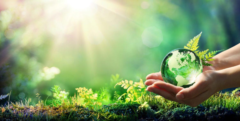 sostenibilità-ambientale.jpg