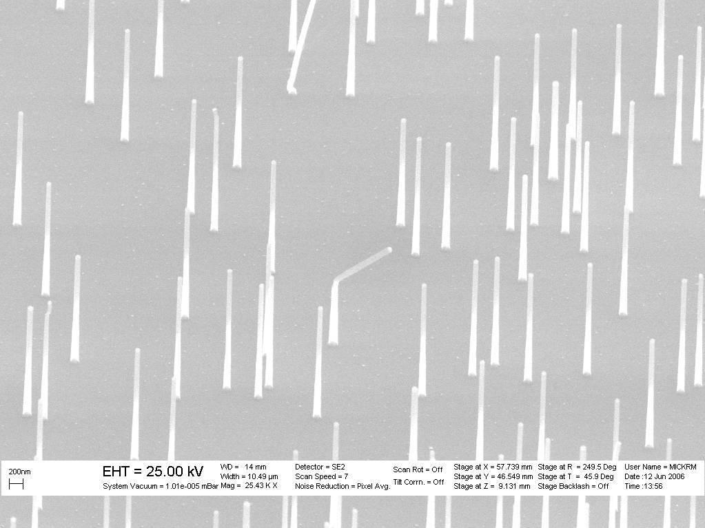 large_dmove_Epitaxial_Nanowire_Heterostructures_SEM_image.jpg