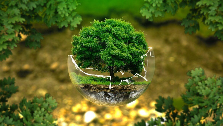 Fonti rinnovabili in Italia e in Europa, dal Gse il documento aggiornato